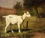A Goat in a Meadow by  Henriette Ronner Knip (Painting ID: AN-1006-KA)