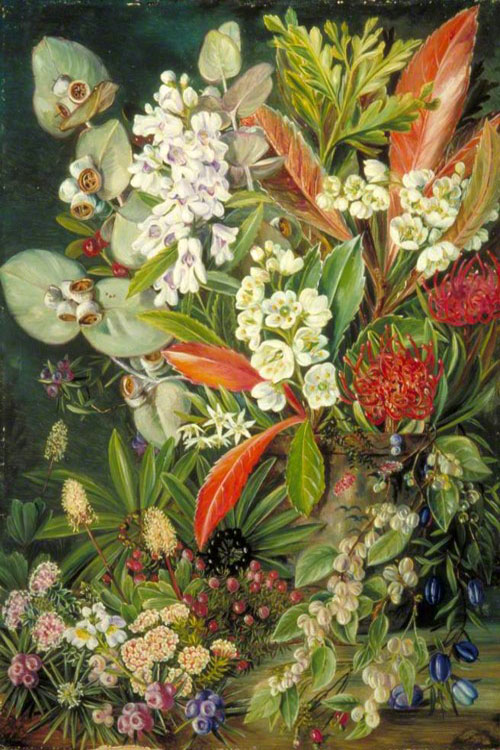 """A Selection of Flowers from Mount Wellington"" by  Marianne North"
