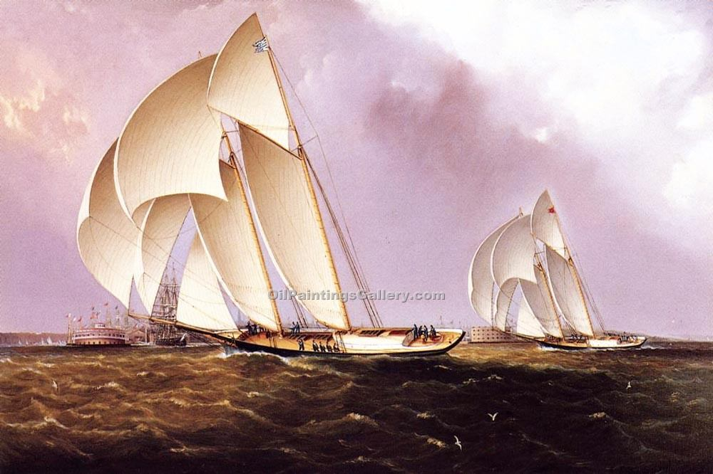 America s Cup Class Yachts Racing in New York Harbor by James E Buttersworth | Art Online Store - Oil Paintings Gallery