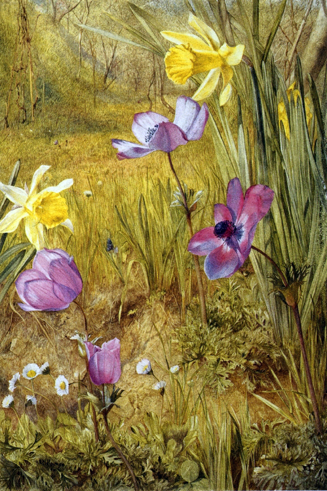 """Anemones and Daffodils 92"" by  Henry Roderick Newman"