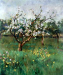 Apple Blossom by  Harold Harvey (Painting ID: LA-2701-KA)