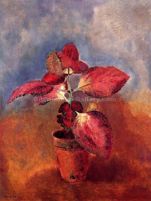 """Begonia in a Pot"" by  Odilon Redon"