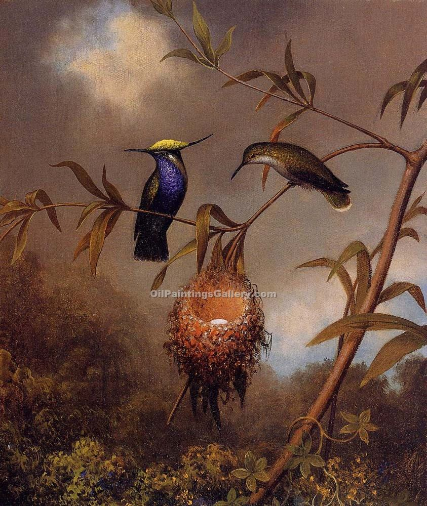 """Black-Breasted Plovercrest"" by  Martin Johnson Heade"