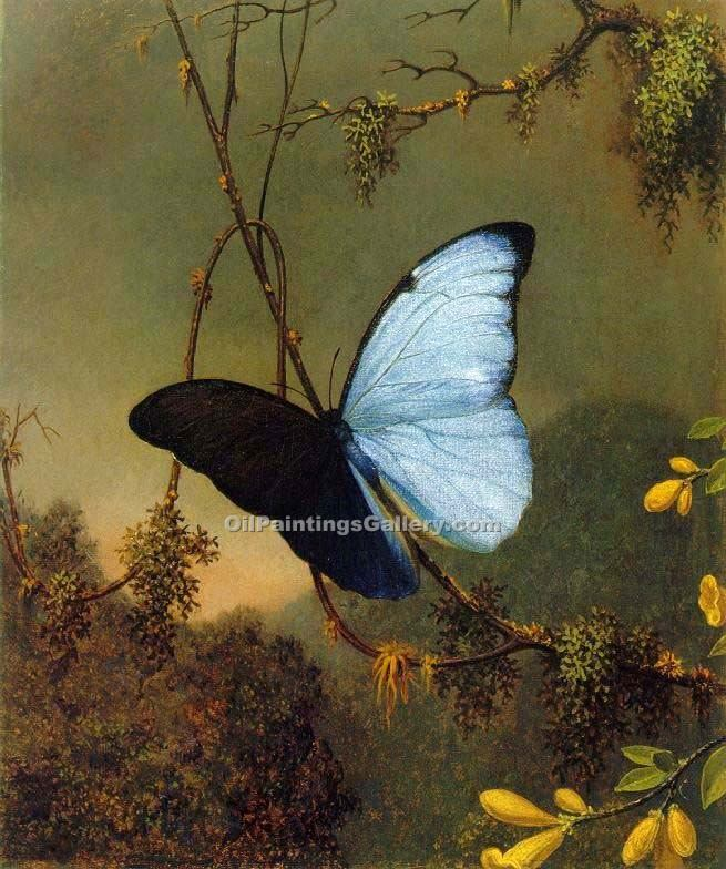 """Blue Morpho Butterfly"" by  Martin Johnson Heade"