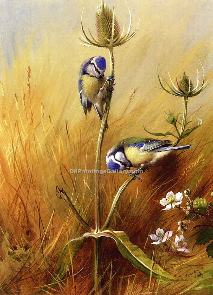 """Bluetits on a Tease"" by  Archibald Thorburn"