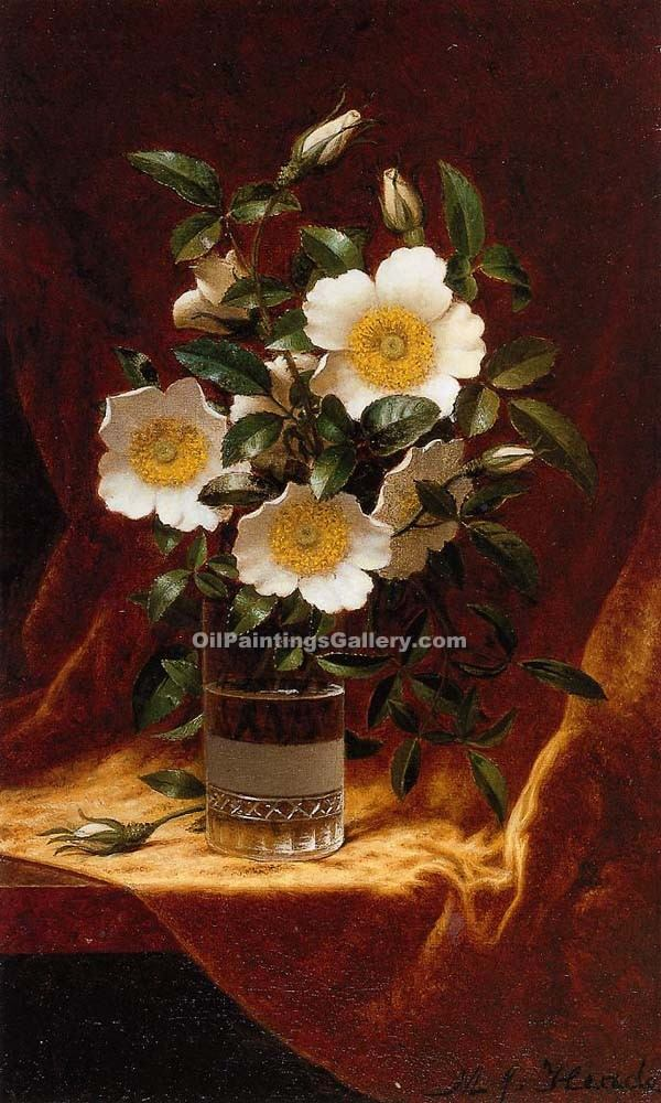 """Cherokee Roses in a Glass"" by  Martin Johnson Heade"