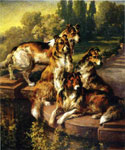 Collie Dogs in Formal Garden by  Edmund H. Osthaus (Painting ID: AN-0445-KA)