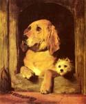 Dignity and Impudence by  Sir Edwin Henry Landseer (Painting ID: AN-0353-KA)