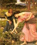 Gather Ye Rosebuds While Ye May by  John William Waterhouse (Painting ID: CL-4227-KA)