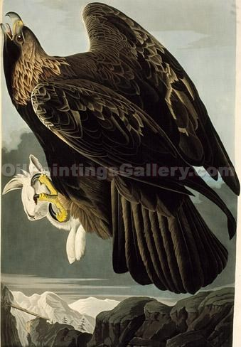 """Golden Eagle"" by  John James Audubon"
