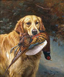 Golden Retriever with a Pheasant by  England 1891 to 1941 Barker Wright (Painting ID: AN-0437-KA)