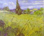 Green Wheat Field with Cypress by  Vincent Van Gogh (Painting ID: VG-0163-KA)