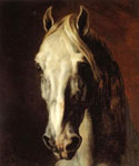 Head of a White Horse by  Theodore Gericault (Painting ID: AN-2317-KA)