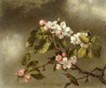 Hummingbird and Apple Blossoms by  Martin Johnson Heade (Painting ID: AN-0842-KA)