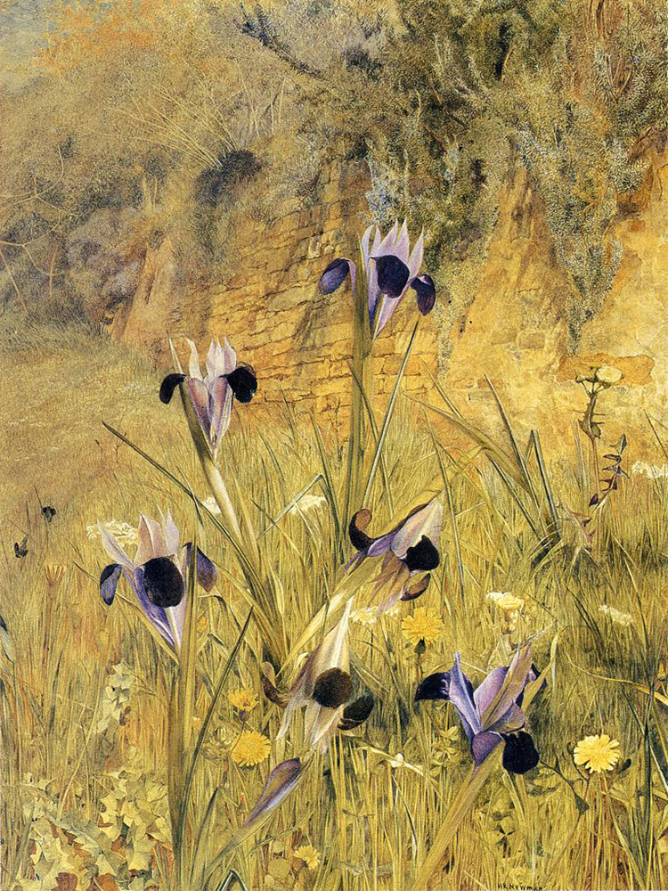"""Irises in the Garden"" by  Henry Roderick Newman"