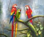 Jungle Parrots 67 Oil Painting (ID: AN-1067-C)