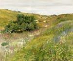 Landscape Shinnecock Hills by  William Merritt Chase (Painting ID: ED-1454-KA)