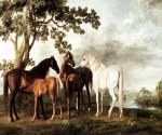 Mares and Foals in a River Landscape by  George Stubbs (Painting ID: AN-2110-KA)