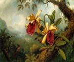Orchids and Hummingbird by  Martin Johnson Heade (Painting ID: AN-0830-KA)