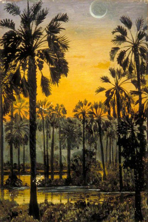 """Palmyra Palms in Flood"" by  Marianne North"