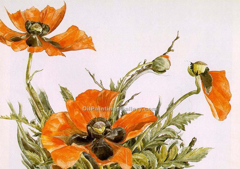 """Poppies 66"" by  Charles Demuth"