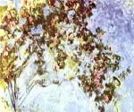 Roses 62 by  Claude Monet (Painting ID: MO-1062-KA)