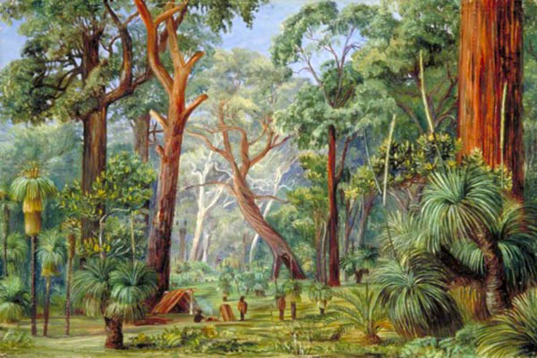 """Scene in a West Australian Forest"" by  Marianne North"