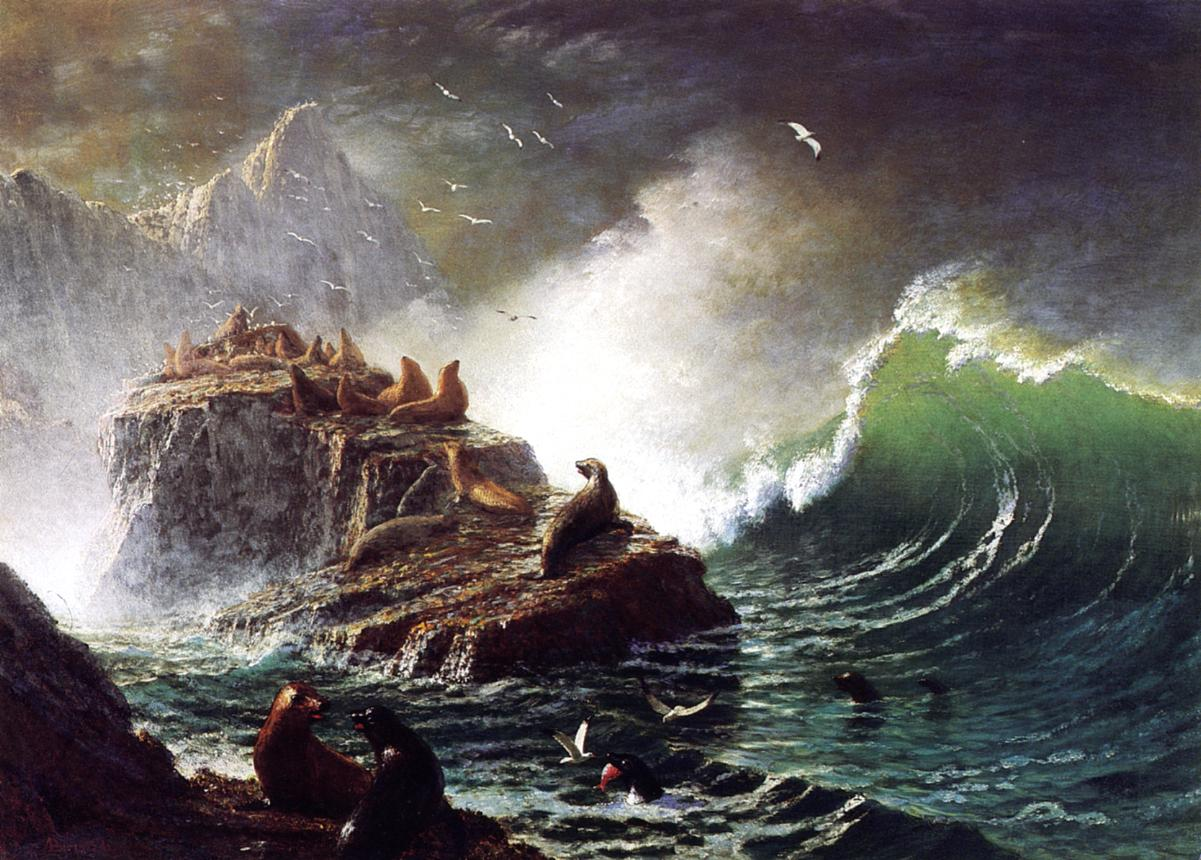"""Seals on the Rocks, Farallon Islands"" by  Albert Bierstadt"