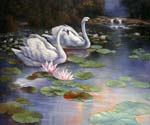 The Swans Lake by  Alexander Koester (Painting ID: AN-0980-KA)