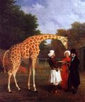 The Nubian Giraffe by  Jacques Laurent Agasse (Painting ID: AN-2065-KA)