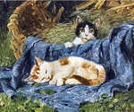 Two Kittens by  Julius Adam (Painting ID: AN-0033-KA)