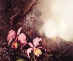 Two Orchids in a Mountain Landscape by  Martin Johnson Heade (Painting ID: AN-0832-KA)