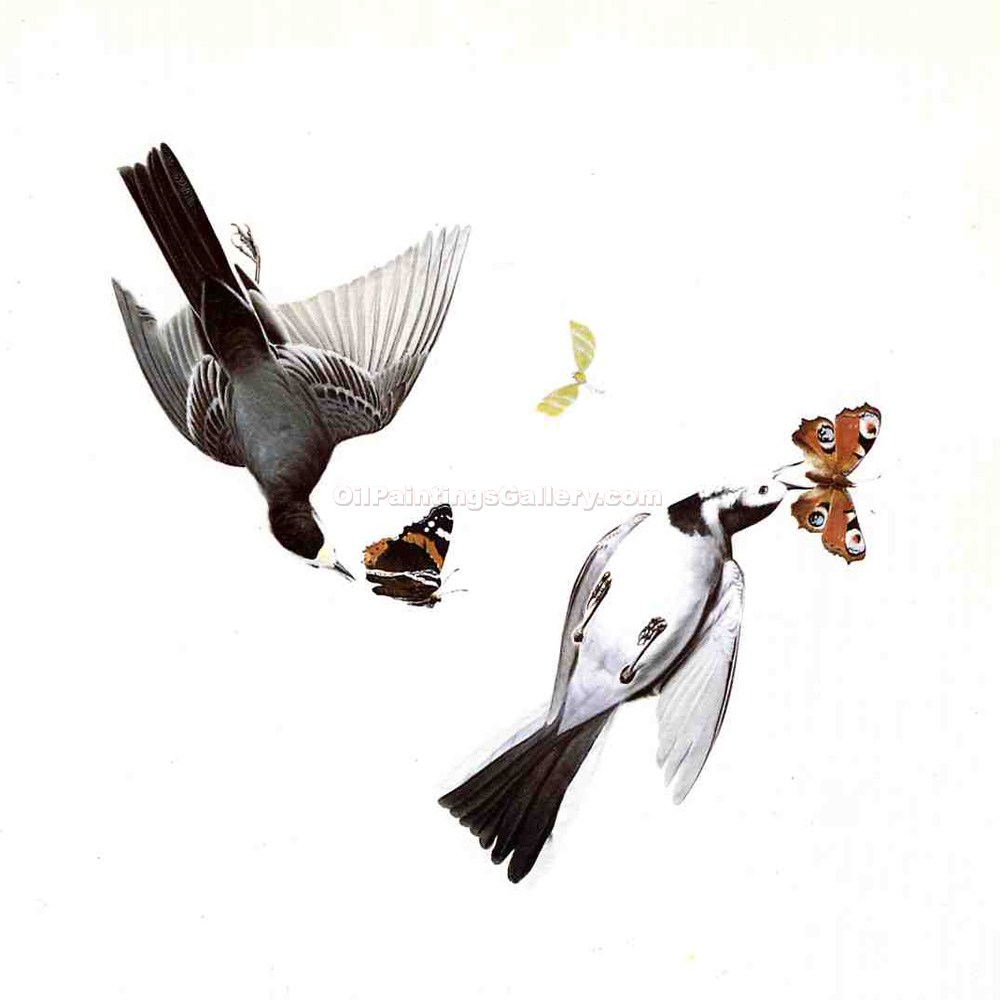 """Wagtails"" by  John James Audubon"