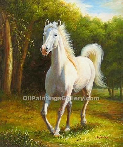 """White Arabian"""