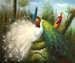 White and Blue Peacocks  (Painting ID: AN-0923-KA)
