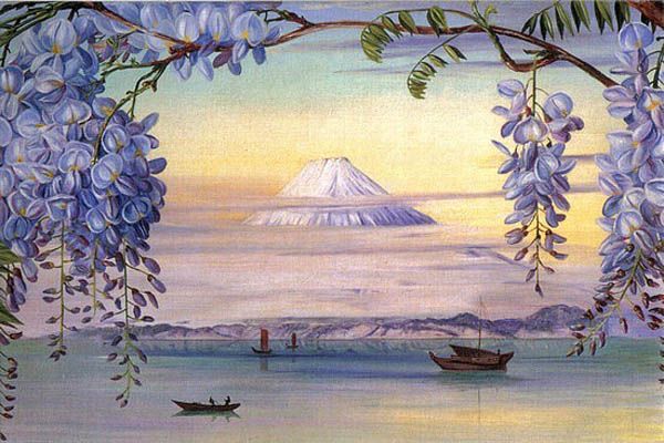 """Wisteria Mt. Fuji"" by  Marianne North"