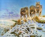 Wolves in Snow Oil Painting (ID: AN-1294-B)